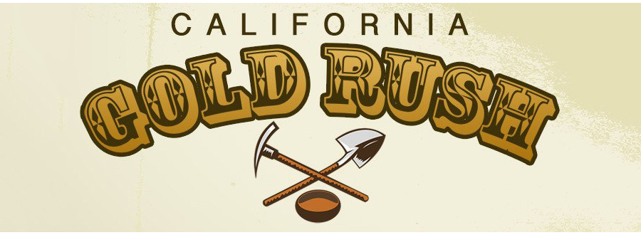 the california gold rush of the 21th century is communications